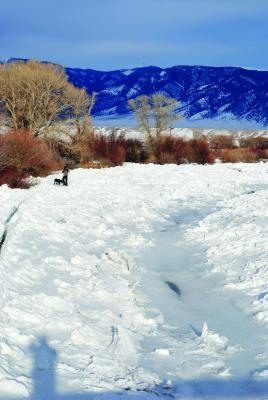 The Madison River channel bordered by ice, creating a gorge through which water flows.