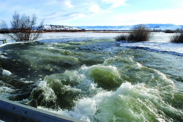Odell Creek was flowing high and just under the concrete bridge that crosses the creek on Friday, February 22. Its waters are higher than usual due to a portion of the Madison River being pushed into the creek's normal channel.