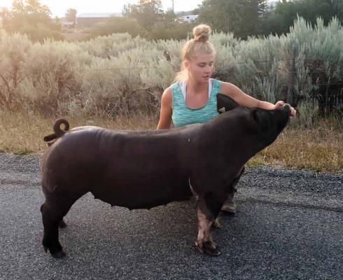Desaray Tipton and Missy practice for the livestock shows in Sheridan. Photos provided by Desaray Tipton