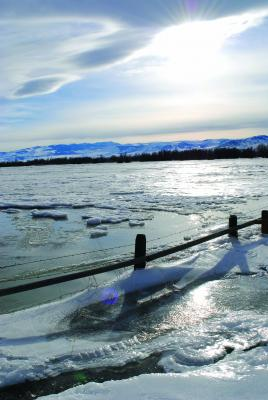 This scene, at Valley Garden FAS, shows the extent of the flooding – and subsequent freezing – as a result of the Madison River's flow being diverted by ice gorging. (J. Taylor photos)