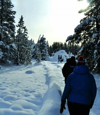Narrow paths are dug into the snow at many of Yellowstone's basins, such as Norris, home to Steamboat Geyser. Maintenance was sparse during the recent government shutdown, but park staff was quickly back to work once the federal government got moving again.