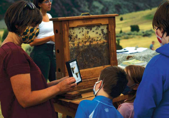 Layla Dunlap shows participants murder hornets from Washington during the Friday Summer Speaker Series at the Lewis and Clark Caverns campground amphitheater July 31. PHOTO BY HANNAH KEARSE