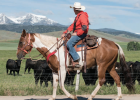 A Pony Poker player watches Hollow Top Mountain as he starts the 2020 Pony Poker Ride at the Sitz Ranch in Harrison June 20.